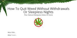 Quit Weed   Quit Weed With Tristan Weatherburn