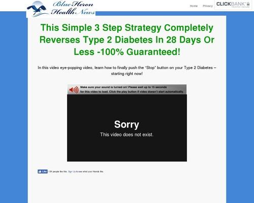 Type 2 Diabetes Strategy sl cb   Blue Heron Health News