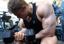 HIGH Volume Back 'n Bicep Workout for MASS