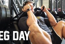 LEG 'n CALF DAY + Stretching Routine
