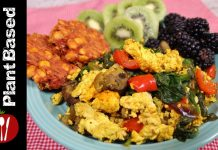 High Protein Plant Based Vegan Breakfast : Whole Food Plant Based Recipes